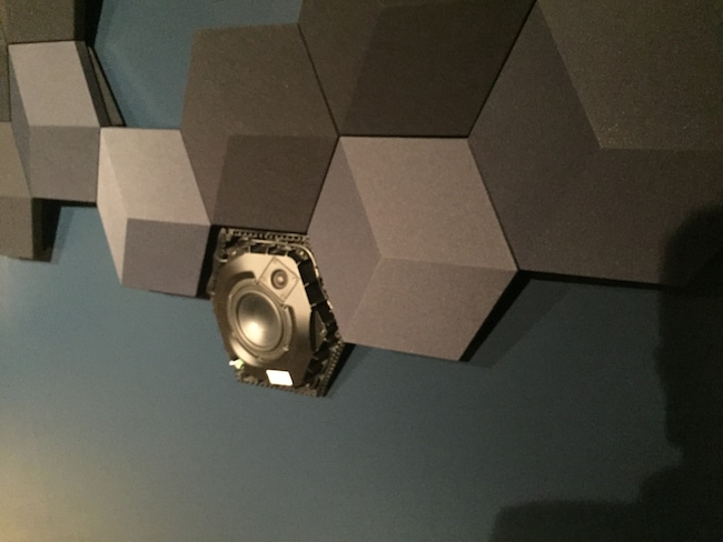 BSS-Exposed_Speaker