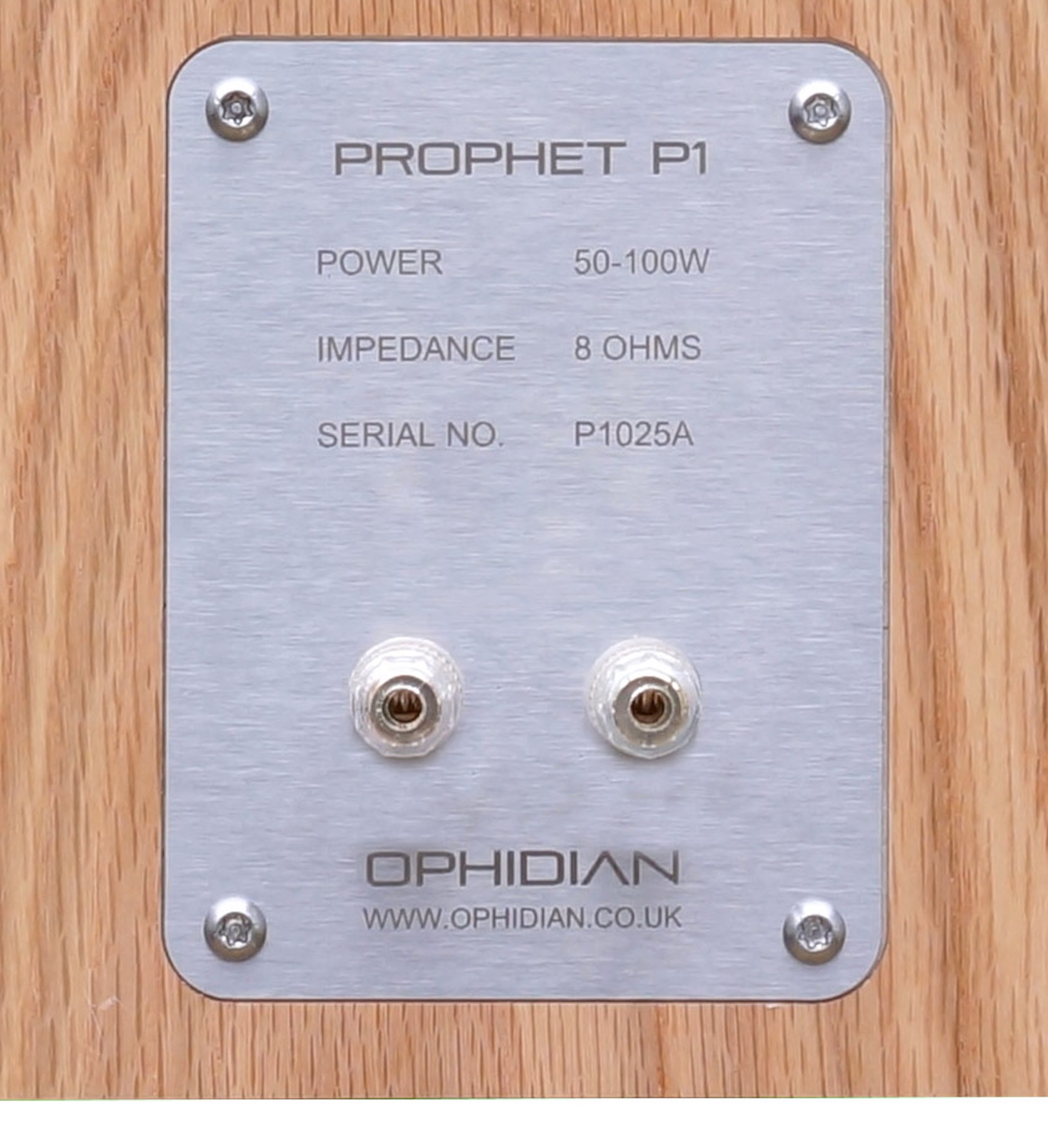 Prophet P1 Speakers from Ophidian: Divine Messages?